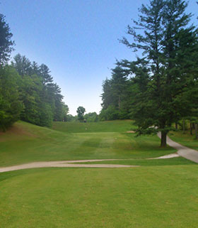 Hole 11 from the Tee Image