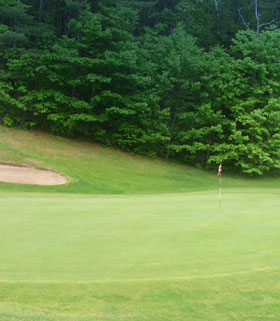 Hole 11 the Green Image