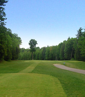 Hole 12 from the Tee Image