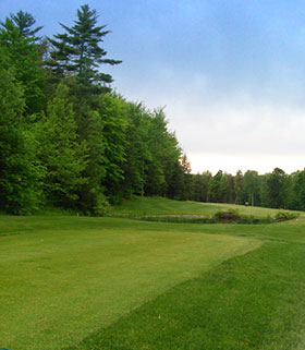 Hole 13 from the Tee Image
