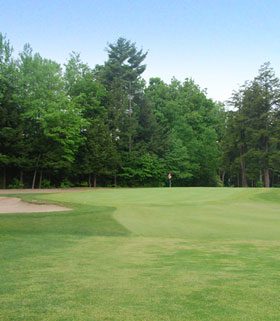 Hole 13 the Green Image