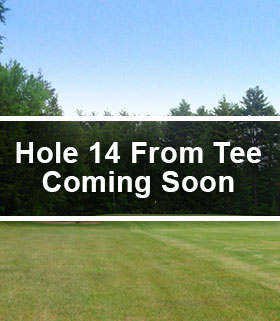 Hole 14 from the Tee Image