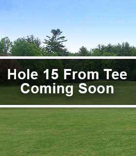 Hole 15 from the Tee Image