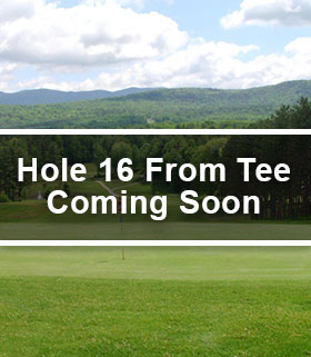 Hole 16 from the Tee Image
