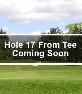 Hole 17 from the Tee Image