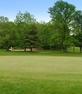 Hole 4 the Green Image
